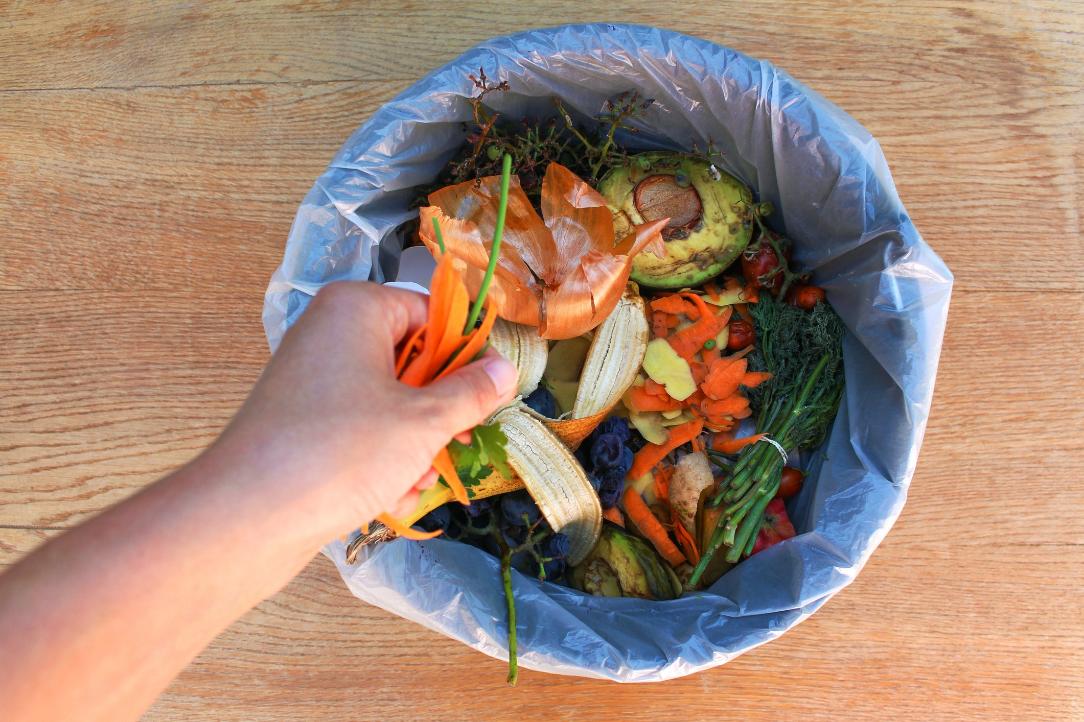 How to manage and process organic food waste